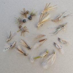 Belize Bonefish Selection