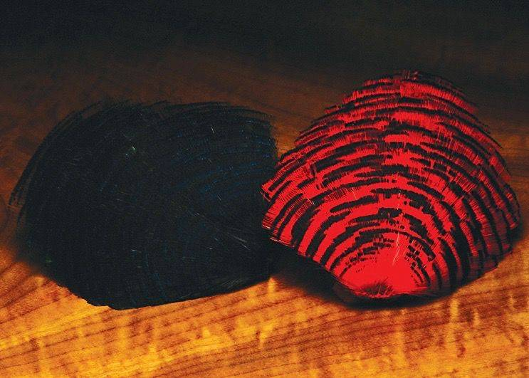 Dyed Golden Pheasant Tippets