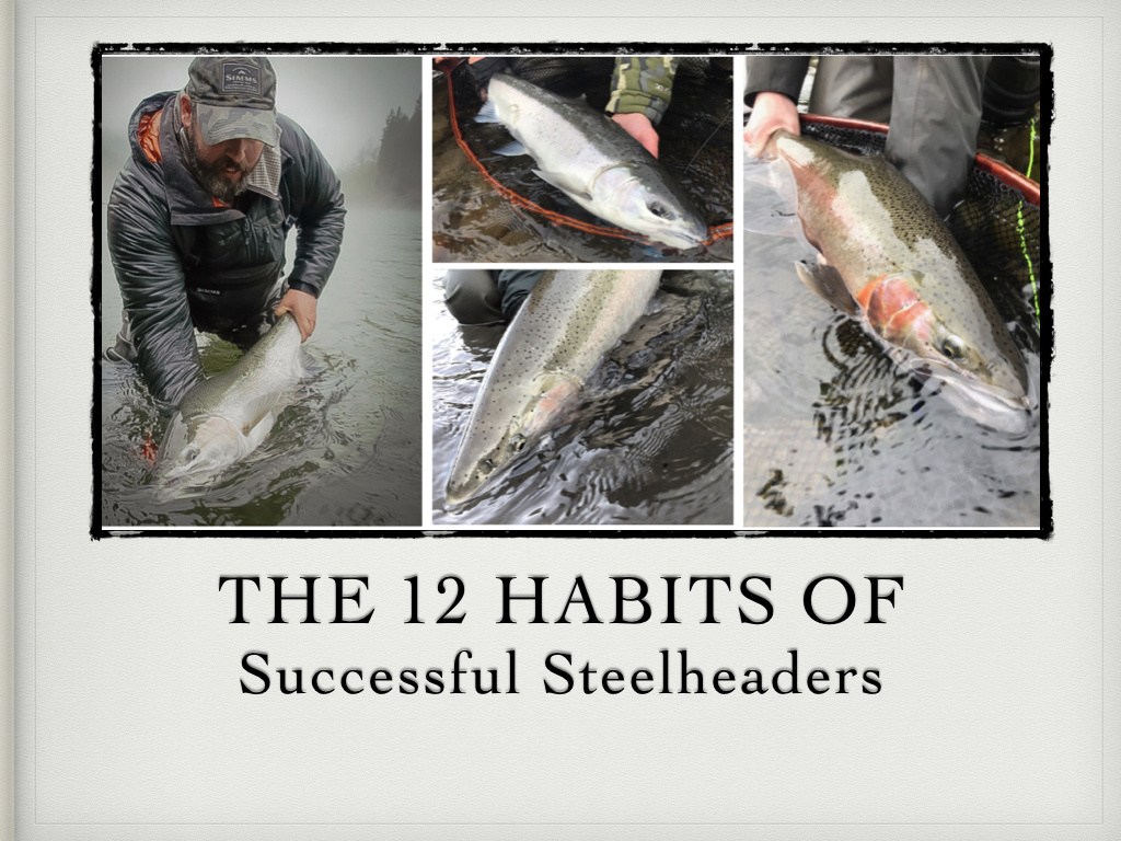 Encore performance: The 12 Habits of Successful Steelheaders, By Marty Sheppard