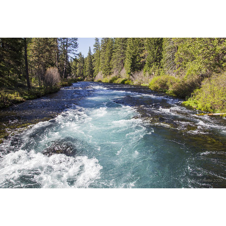 Notice from the Friends of the Metolius