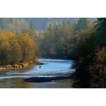 Rogue Riverkeeper Call to Action