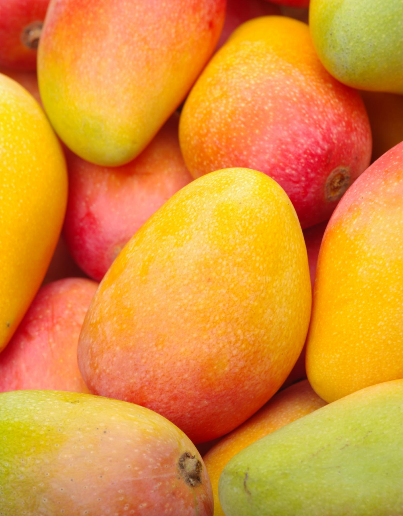 Mango (Alfoos)