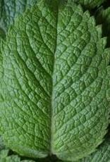 Thai Lemongrass-Mint White Balsamic