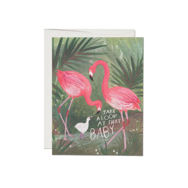 Red Cap Red Cap Greeting Cards Flamingo Baby