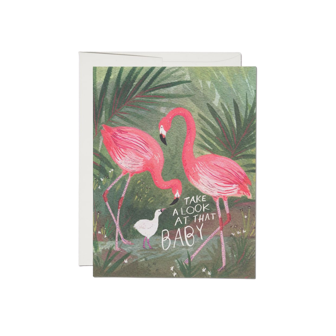 Red Cap Red Cap Greeting Cards Flamingo Baby