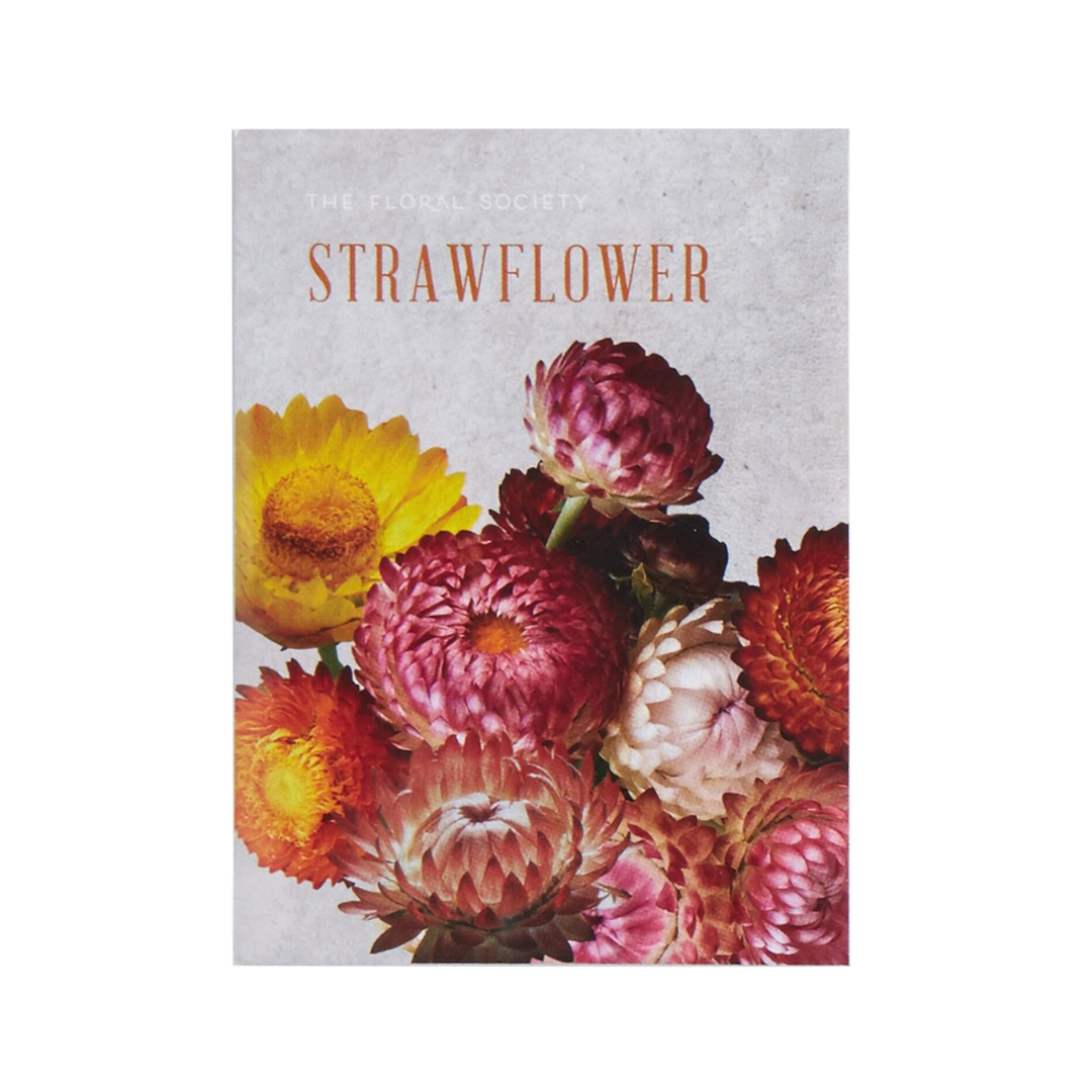 The Floral Society Seed Packs - Strawflower