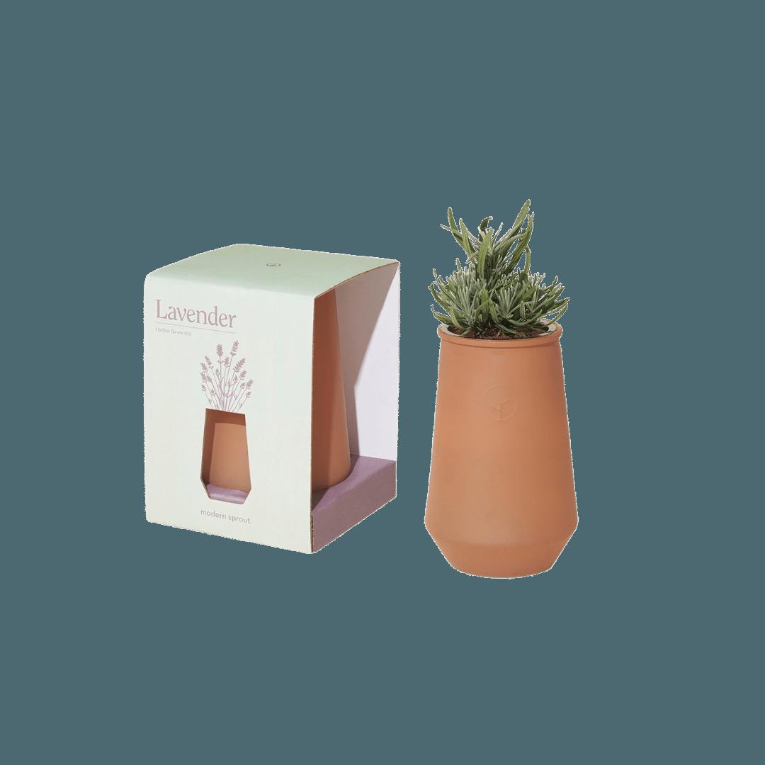 Modern Sprout Sahara Tapered Tumbler - Lavender