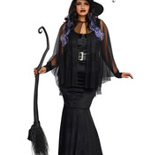 Dreamgirl Dreamgirl Bewitching Beauty Costume