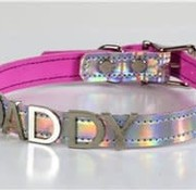 "Funk Plus 3/4"" Rainbow Choker (Daddy)"