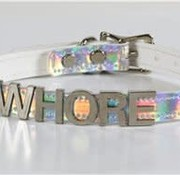 Funk Plus Silver Rainbow Steel Choker (Whore)
