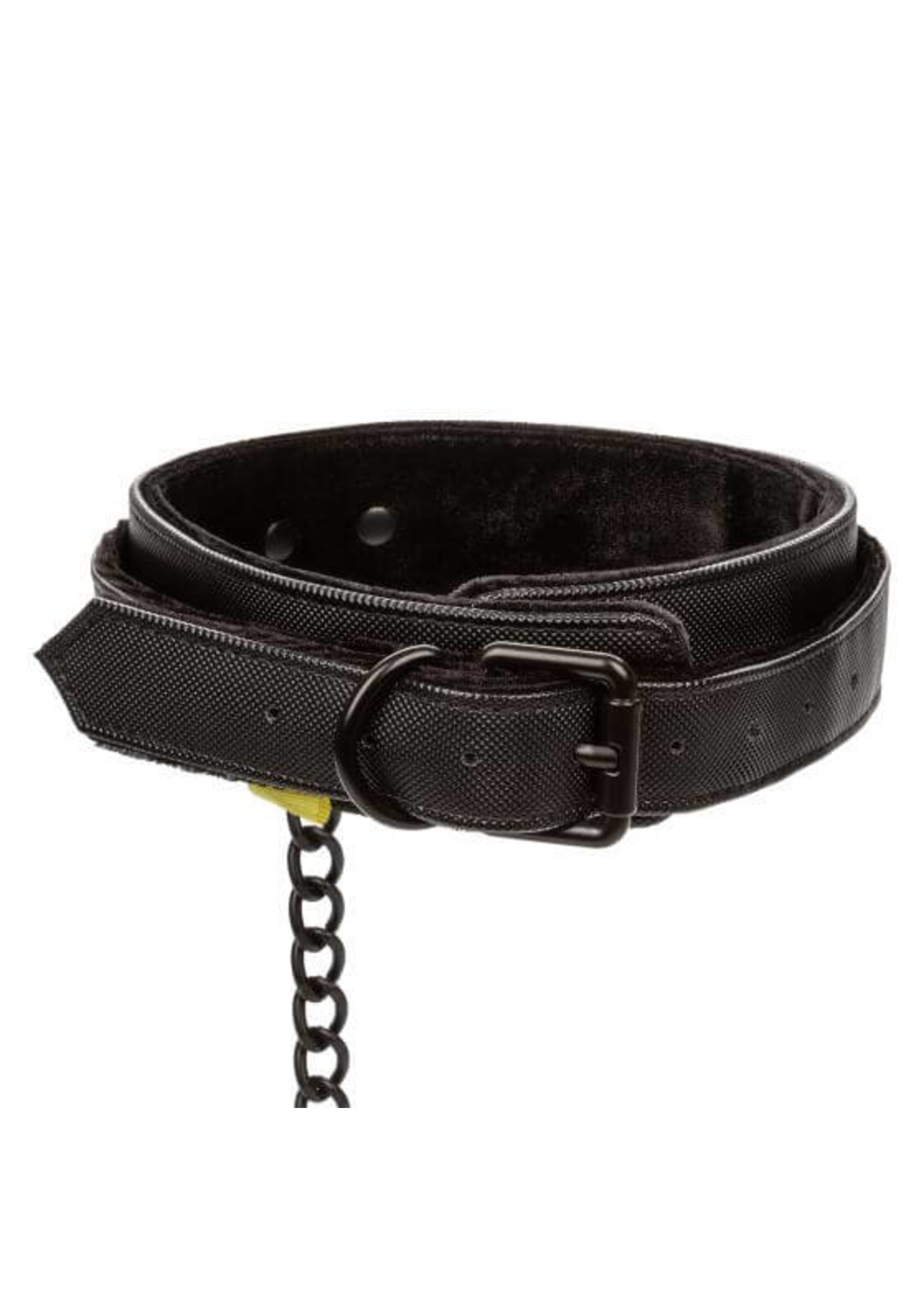 Boundless Boundless Collar with Leash