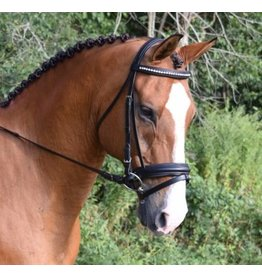Black Oak Black Oak Larkspur Padded Bridle w/Dressage Reins