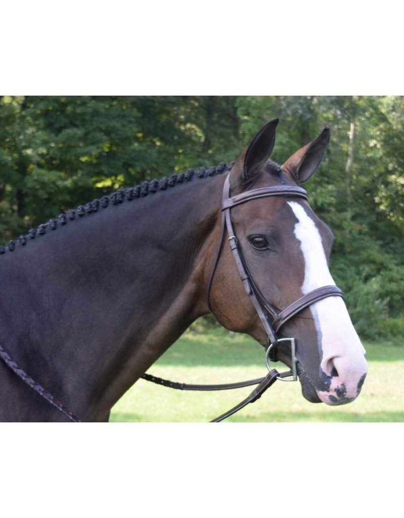 Black Oak Black Oak Spruce Bridle Australian Nut Square Raised w/ Laced Reins