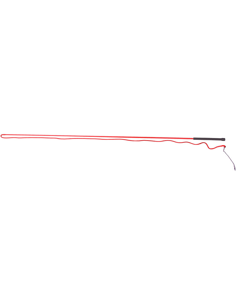 Lunge Whip - Long