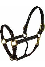 Perri's Twisted Leather Halter Horse Havana