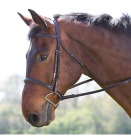 Plain Raised Padded Crown Bridle