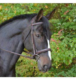 Black Oak Black Oak Cyprus Bridle AN w/Padded Headstall and 5/8 Laced Reins