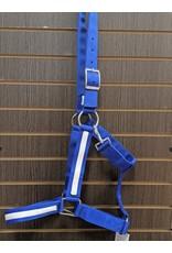 2X Draft Horse Halter w/ Overlay