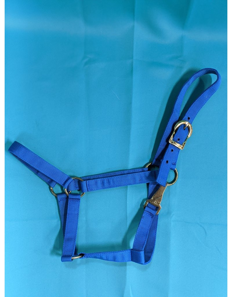 Blue Halter Full