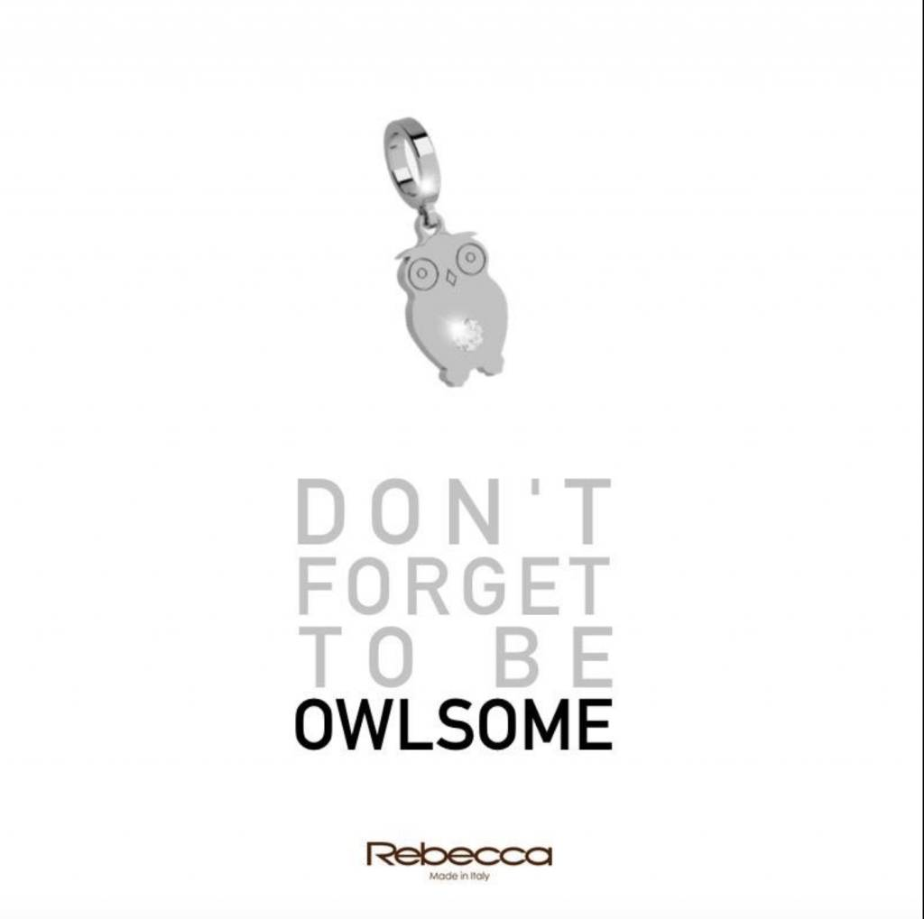 Rebecca Owl with Crystal Charm, Silver