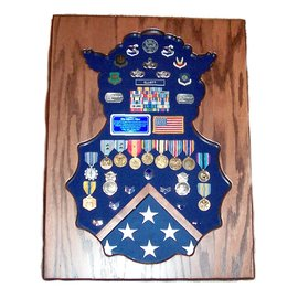 Morgan House Security Forces Shadow Box