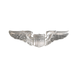 Pilot Wings Functional Badge