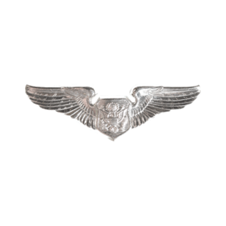 Nonrated Aircrew Wings Functional Badge