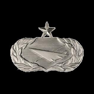 Historian Functional Badge