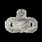 Information Management Functional Badge
