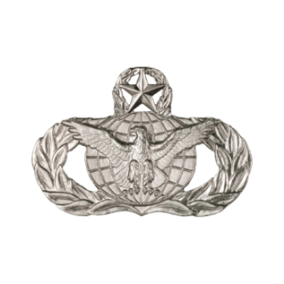 Force Protection Functional Badge