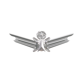 Space Wings Functional Badge