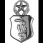 Veterinarian Functional Badge