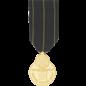 US Navy Expert Rifle