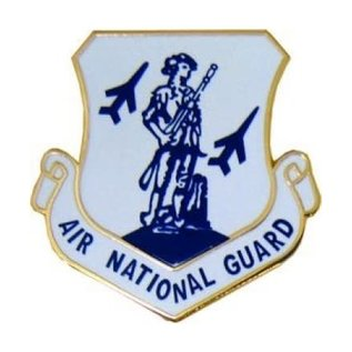 Air National Guard (ANG) Pin - 15982 (1 1/8 inch)