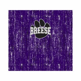 Breese D12 School Spirit Neck Gaiters
