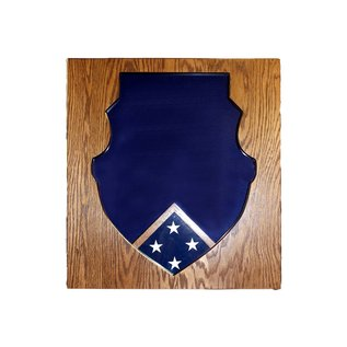 Morgan House Shadow Box in the shape of the Weapons School Badge with a 3x5 flag area