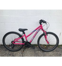 """Specialized PRE-OWNED 24"""" SPECIALIZED HOTROCK 21SPD"""