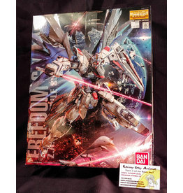 Gundam Seed Freedom MG Model Kit
