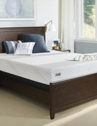 Sealy Optimistic Plush Foam Mattress