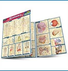 Anatomy Quick Study Quizzer