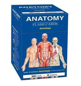 Deck: Anatomy Flash Cards