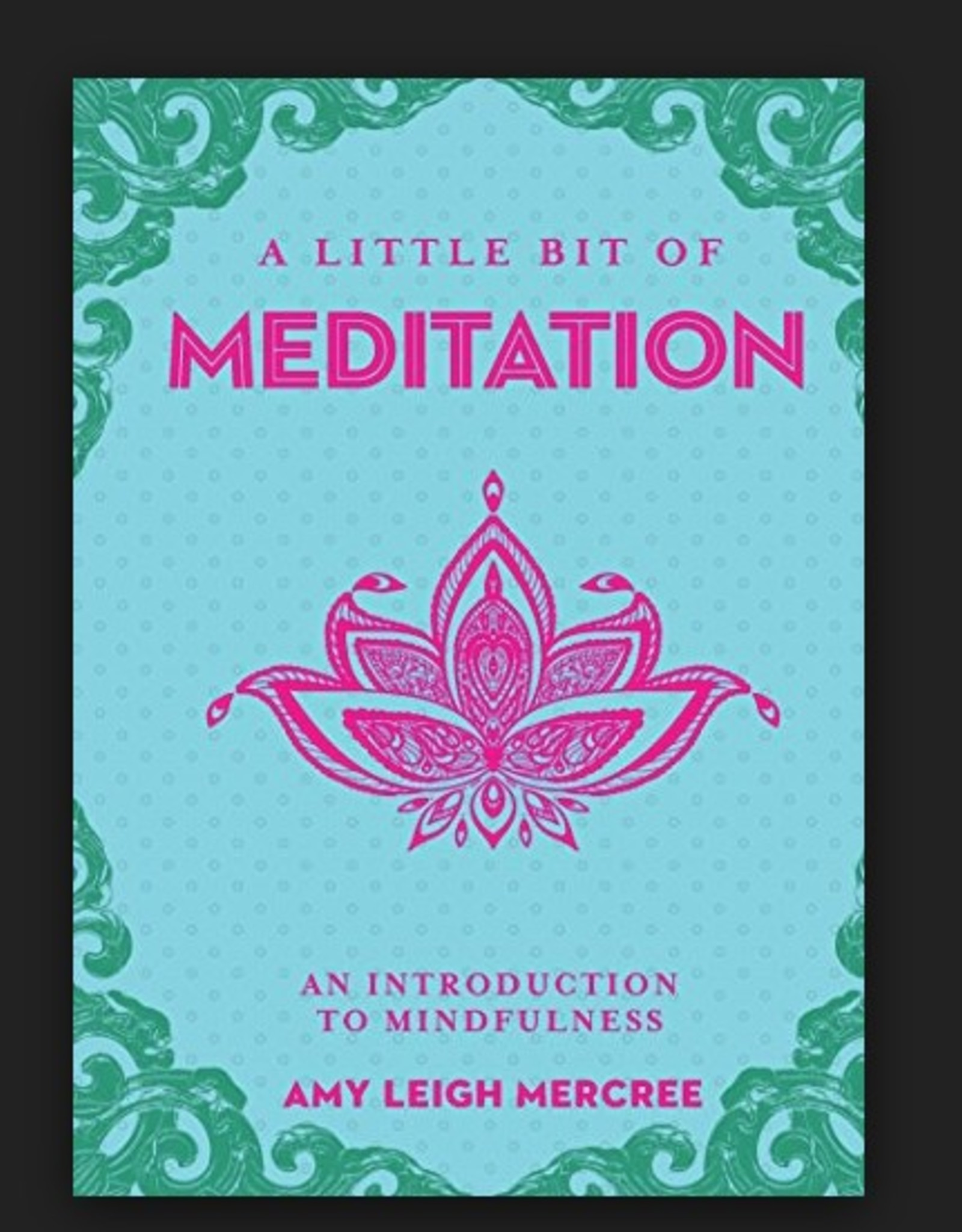 Ingram A Little Bit of Meditation: An Introduction to Mindfulness