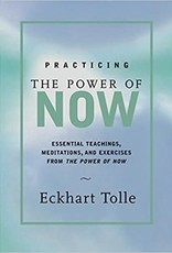 Practicing the Power of Now: Tolle