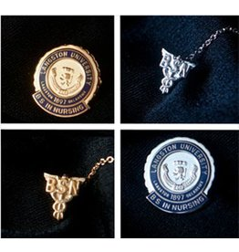 Stylecraft Langston University Nursing Pin