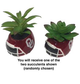 "Sporticulture OU Ceramic Helmet Planter w/ Artificial Succulent 3.5""x2.75""x 2.6"" high"
