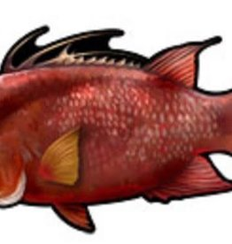 AGI AGI HOGFISH DECAL