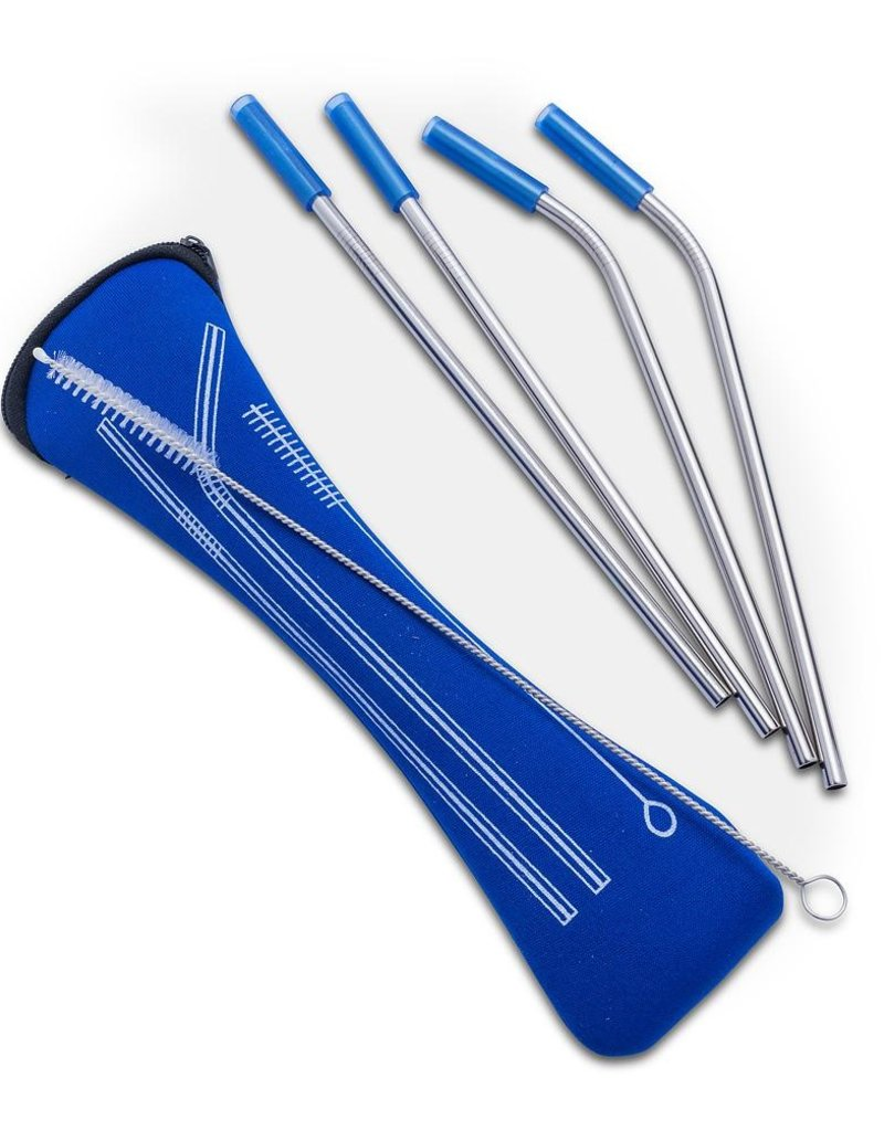 Stainless Steel Straw 4 Pack travel case