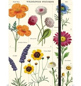 Large notebook 6x8: Wildflowers