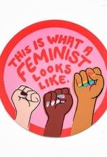 Rhino Parade Sticker - This is what a feminist looks like