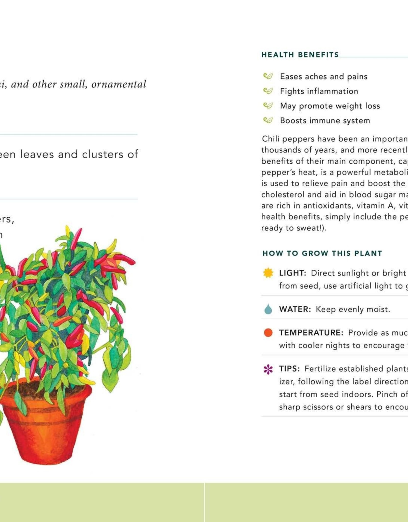 Simon & Schuster Houseplants For A Healthy Home